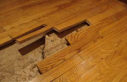 Hỏi báo giá sửa chữa sàn gỗ chống nước?
